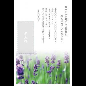 年賀状印刷デザインテンプレート : 0018
