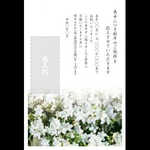 年賀状印刷デザインテンプレート : 0021