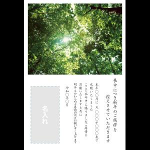 年賀状印刷デザインテンプレート : 0024