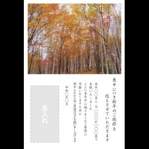 年賀状印刷デザインテンプレート : 0027