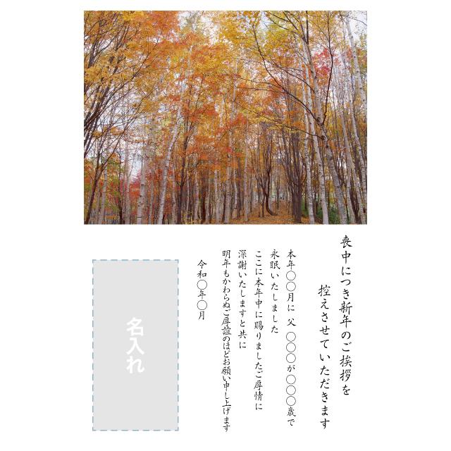 年賀状印刷デザインテンプレート:0027