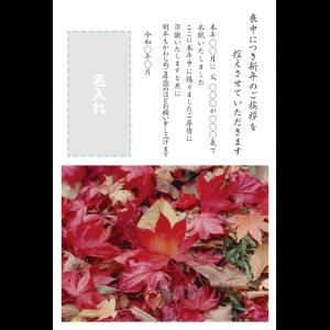 年賀状印刷デザインテンプレート : 0028