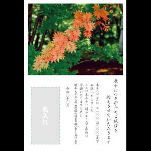 年賀状印刷デザインテンプレート : 0029