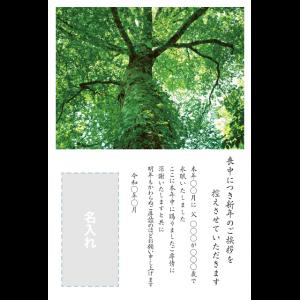 年賀状印刷デザインテンプレート : 0034