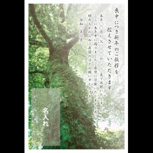 年賀状印刷デザインテンプレート : 0035