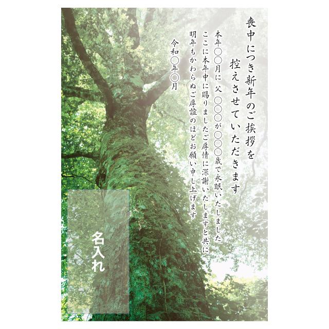 年賀状印刷デザインテンプレート:0035