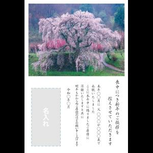 年賀状印刷デザインテンプレート : 0036