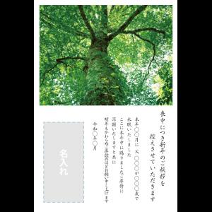 年賀状印刷デザインテンプレート : 0037