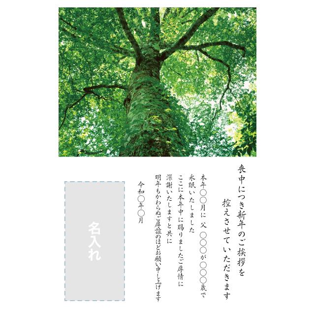 年賀状印刷デザインテンプレート:0037