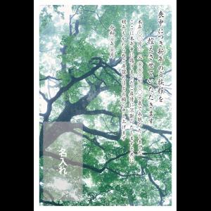 年賀状印刷デザインテンプレート : 0038