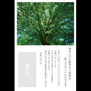 年賀状印刷デザインテンプレート : 0039