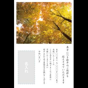 年賀状印刷デザインテンプレート : 0042