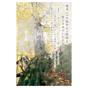 年賀状印刷デザインテンプレート : 0043
