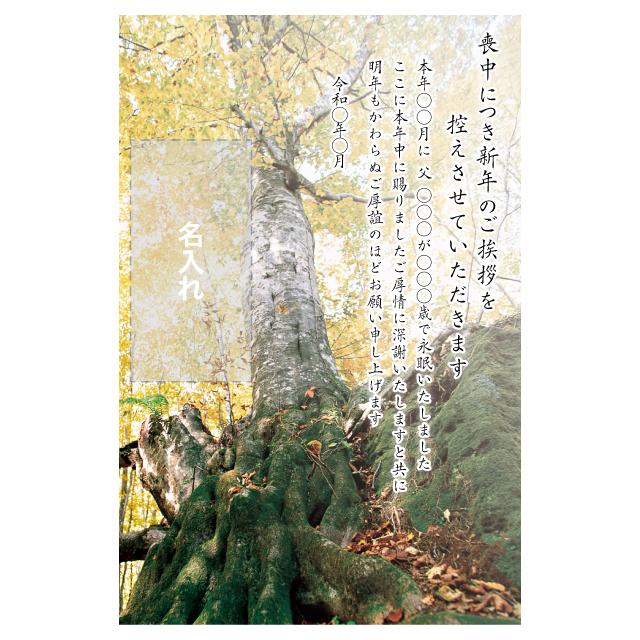 年賀状印刷デザインテンプレート:0043