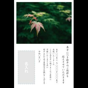 年賀状印刷デザインテンプレート : 0059