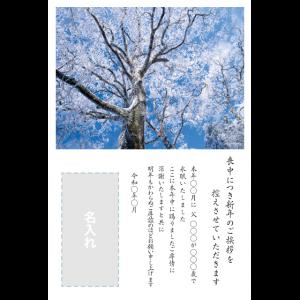 年賀状印刷デザインテンプレート : 0063