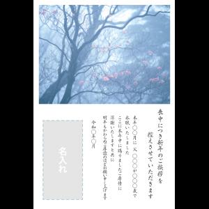年賀状印刷デザインテンプレート : 0065