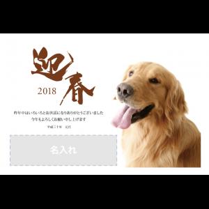 年賀状印刷デザインテンプレート : 0990