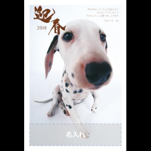 年賀状印刷デザインテンプレート : 1001