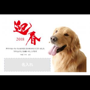 年賀状印刷デザインテンプレート : 1041