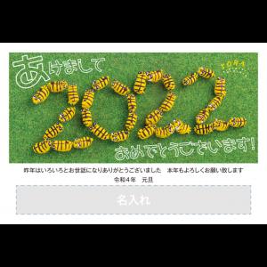 年賀状印刷デザインテンプレート : 3160