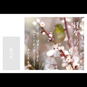 年賀状印刷デザインテンプレート : 3240