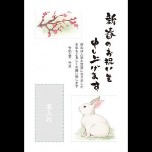 年賀状印刷デザインテンプレート : 6059