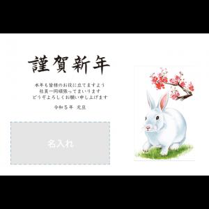 年賀状印刷デザインテンプレート : 6141